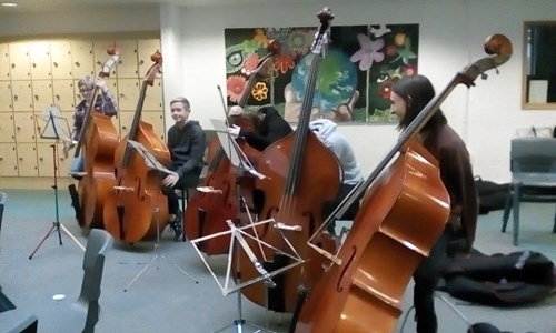 Five Double Basses and one missing!